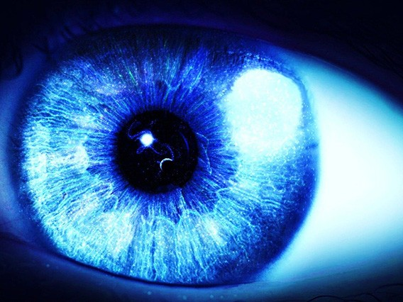 ojo-stargardt