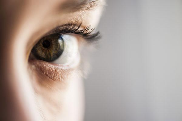 Curiosidades de los Ojos