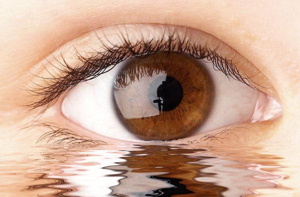 Resultado de imagen de El Cristalino del ojo