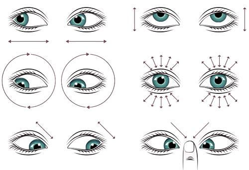 Los ejercicios oculares para ejercitar los músculos presentes en los ojos, funcionan para reducir la tensión y el estrés visual